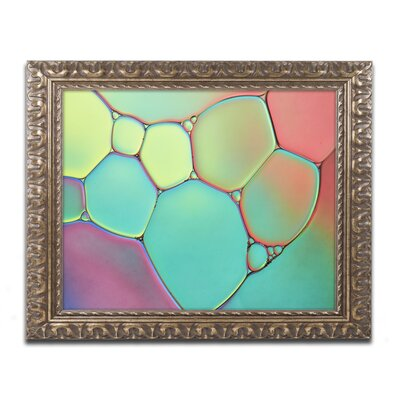 "Stained Glass III by Cora Niele Framed Photographic Print Size: 11"" H x 14"" W x 0.5"" D ALI1732-G1114F"
