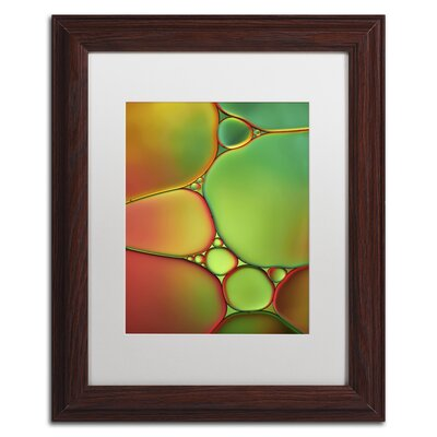 "Stained Glass II"" by Cora Niele Framed Photographic Print ALI1731-W1114MF"