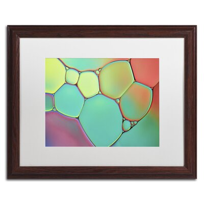 Stained Glass III by Cora Niele Framed Photographic Print ALI1732-W1620MF