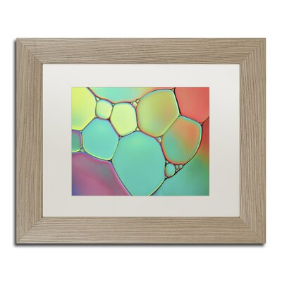 Stained Glass III by Cora Niele Framed Photographic Print ALI1732-T1114MF