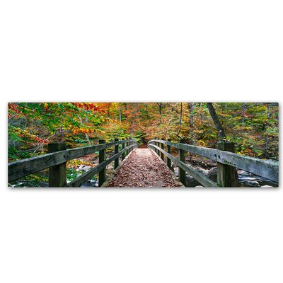 'Autumn in Rock Creek Park' by Gregory O'Hanlon Photographic Print on Wrapped Canvas GO0046-C619GG