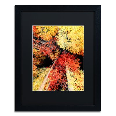 'Warming up' by Philippe Sainte-Laudy Framed Photographic Print PSL0938-B1620BMF