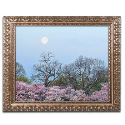 'Spring Moon 2' by CATeyes Framed Photographic Print MZ0377-G1114F