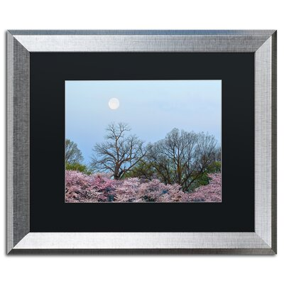 'Spring Moon 2' by CATeyes Framed Photographic Print MZ0377-S1114BMF