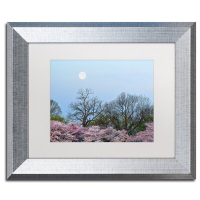 'Spring Moon 2' by CATeyes Framed Photographic Print MZ0377-S1114MF