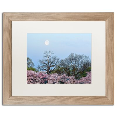 'Spring Moon 2' by CATeyes Framed Photographic Print MZ0377-T1620MF