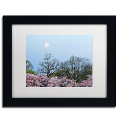 'Spring Moon 2' by CATeyes Framed Photographic Print MZ0377-B1620MF