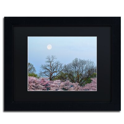 'Spring Moon 2' by CATeyes Framed Photographic Print MZ0377-B1114BMF