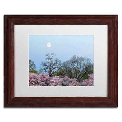 'Spring Moon 2' by CATeyes Framed Photographic Print MZ0377-W1114MF