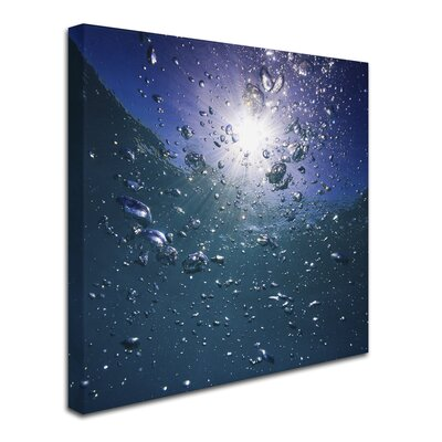 'Bubbles' Photographic Print on Wrapped Canvas DE0135-C1818GG