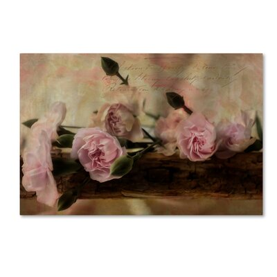 'Passion Pink 2' Graphic Art Print on Wrapped Canvas ALI16055-C1219GG