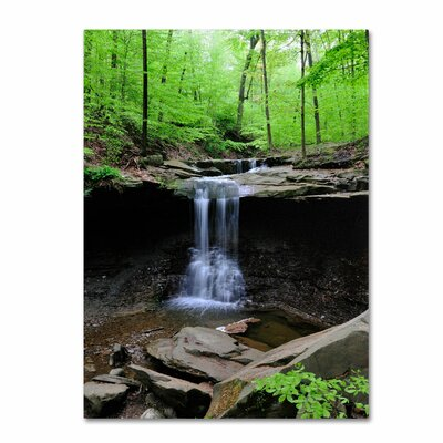 'Blue Hen Falls' by Kurt Shaffer Wrapped Photographic Print on Canvas Size: 32'' H x 24'' W x 2'' D