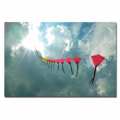 '70 Kites' by Kurt Shaffer Photographic Print on Canvas