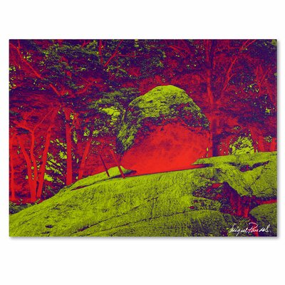 'Enchanged Rock I' by Miguel Paredes Painting Print on Canvas Size: 35