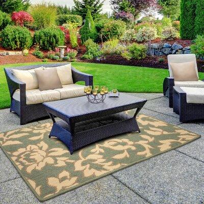 Jaya Bennet Green/Beige Indoor/Outdoor Area Rug Rug Size: 2 x 3