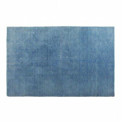 Hotel Ocean Blue Area Rug Rug Size: 3 x 5
