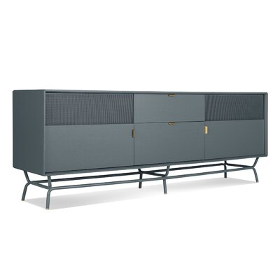 Dang 82 TV Stand Color: Blue