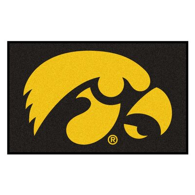 Collegiate NCAA University of Iowa Doormat