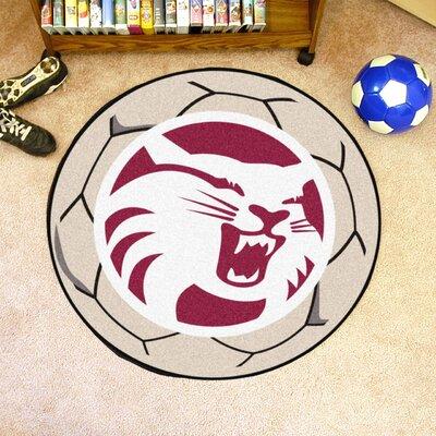 NCAA Cal State - Chico Soccer Ball