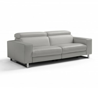 Abarca Reclining Loveseat Upholstery: Light Gray