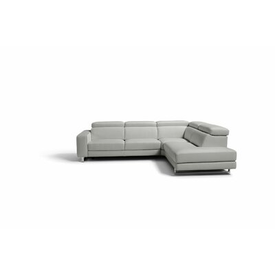 Sania Leather Sectional Upholstery: Gray