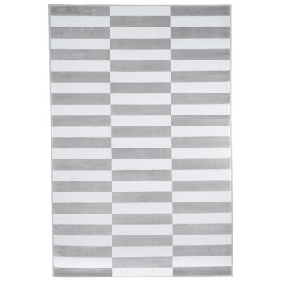 Checkered Stripes Gray Area Rug Rug Size: Rectangle 33 x 5