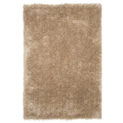 Tan Area Rug Rug Size: Rectangle 53 x 77