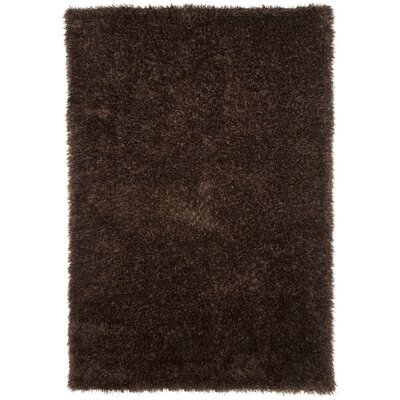 Chocolate Area Rug Rug Size: 53 x 77