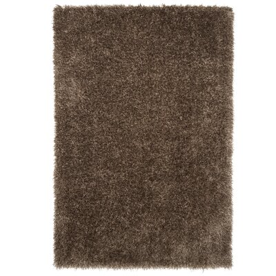 Mocha Area Rug Rug Size: Rectangle 53 x 77