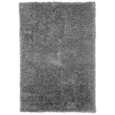 Rusnak Gray Shag Area Rug Rug Size: Rectangle 53 x 77