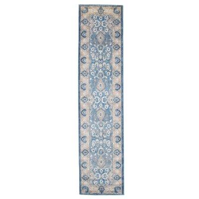 Blue Area Rug Rug Size: Runner 18 x 7