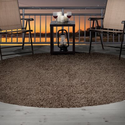 Brown Indoor/Outdoor Area Rug Rug Size: 33 x 5