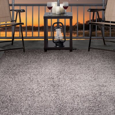 Platinum Indoor/Outdoor Area Rug Rug Size: Rectangle 5 x 77