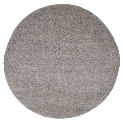Platinum Indoor/Outdoor Area Rug Rug Size: Round 8
