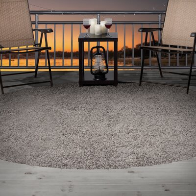 Platinum Indoor/Outdoor Area Rug Rug Size: 5 x 77