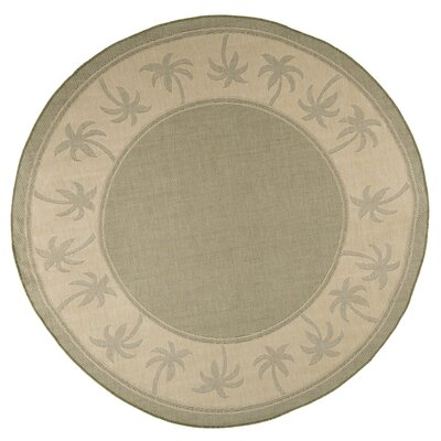Palm Trees Green Indoor/Outdoor Area Rug Rug Size: Rectangle 5 x 77