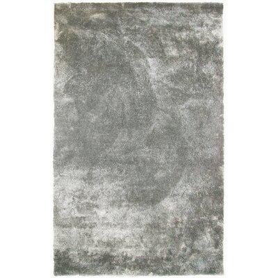 Fur Silver Shag Area Rug Rug Size: 6 x 9