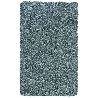 Pearly Teal Shag Area Rug Rug Size: 4 x 6