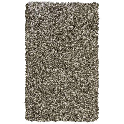Pearly Beige Shag Area Rug Rug Size: 4 x 6