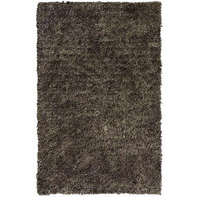 Downy Taupe Shag Area Rug Rug Size: 3 x 46
