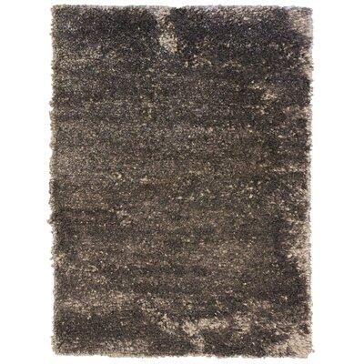Petal Shag Charcoal Area Rug Rug Size: 8 x 10
