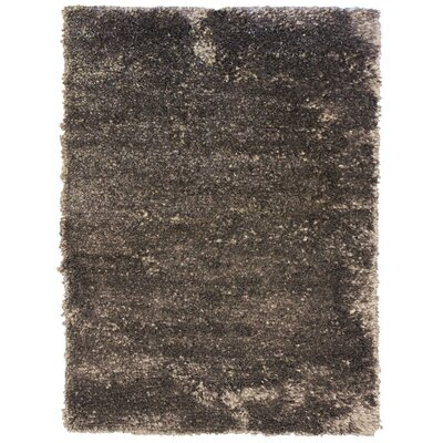 Petal Charcoal Shag Area Rug Rug Size: 5 x 76