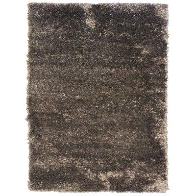 Petal Charcoal Shag Area Rug Rug Size: 8 x 10