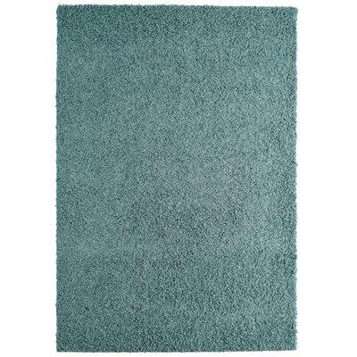 Modern Blue Aqua Shag Area Rug Rug Size: 6 x 8
