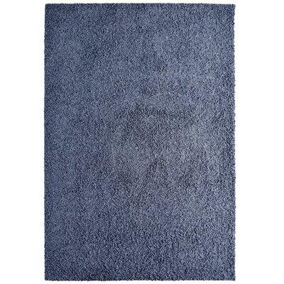 Modern Blue Indigo Shag Area Rug Rug Size: 6 x 8