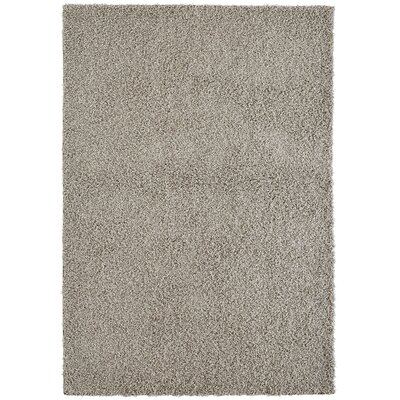 Modern Maple Shag Area Rug Rug Size: 6 x 8