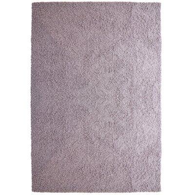 Modern Purple Shag Area Rug Rug Size: 9 x 12