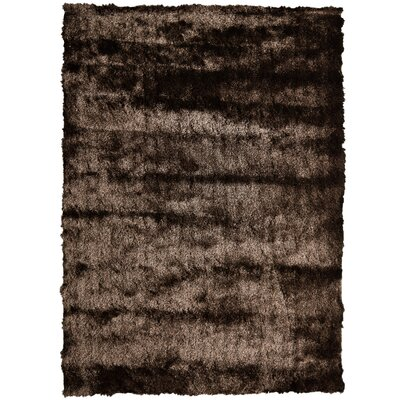 Moonlight Path Chocolate Area Rug Rug Size: Rectangle 5 x 7