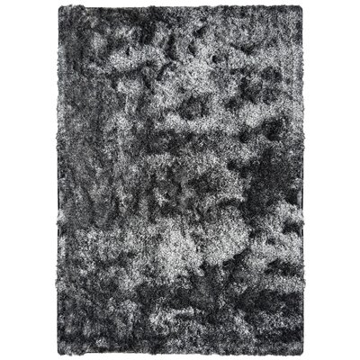 Stardust Day & Night Rug Rug Size: 4 x 6