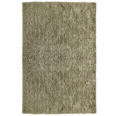 Soft Shag Taupe Area Rug Rug Size: 6 x 9